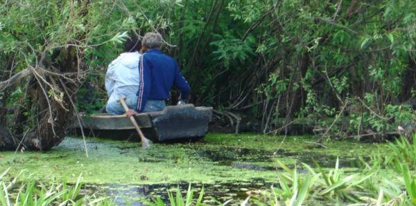 Foto: Priceless-Obedska bara, buduće Natura 2000 područje (Mladi istraživači Srbije)